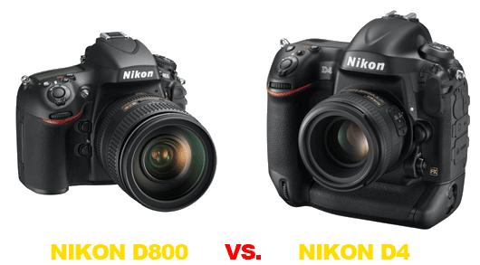 Confronto Nikon D800 vs D4