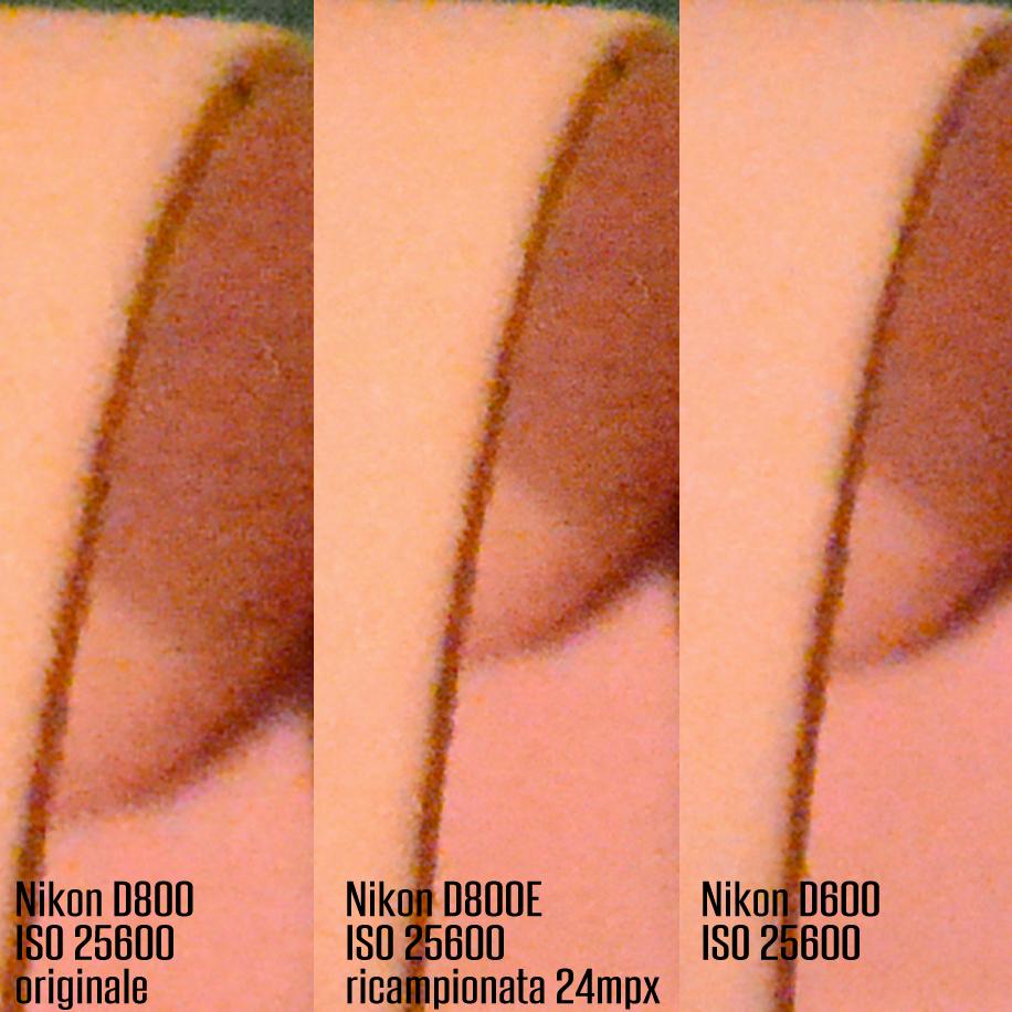 Testa a testa tra Nikon D600 e Nikon D800E