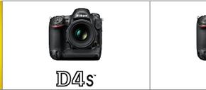 Confronto Nikon D4 vs Nikon D4S