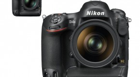 Nikon D4 vs Nikon D4S: Autofocus, Video